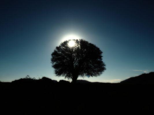 Le baiser du soleil