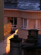 Le balcon des voisins