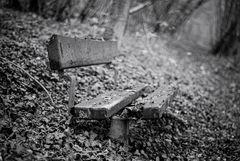 Le banc dans le bois