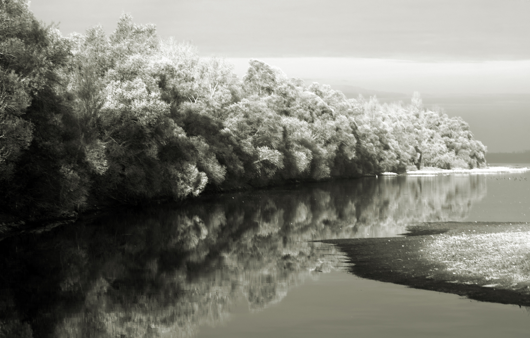 le bas Rhin - der niedrige Rhein
