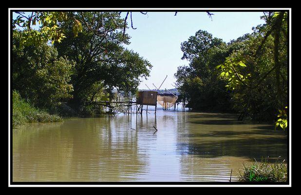 Le bayou de Gironde