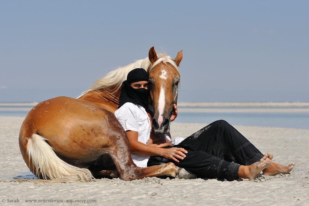 le beduin...