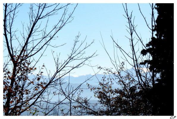 le bleu des montagnes