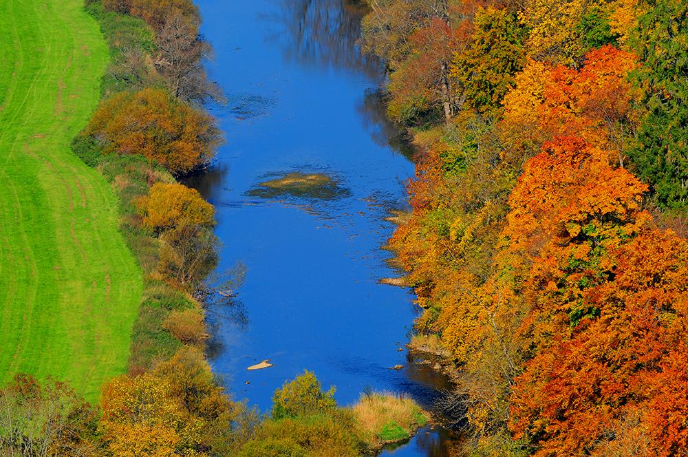 Le Bleu du Danube