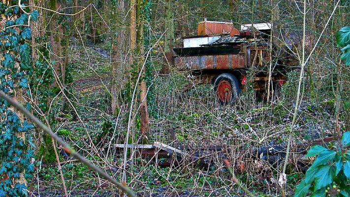 Le bois cache-misère