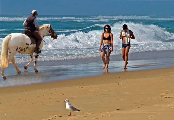 Le bonheur est aussi sur la plage… !