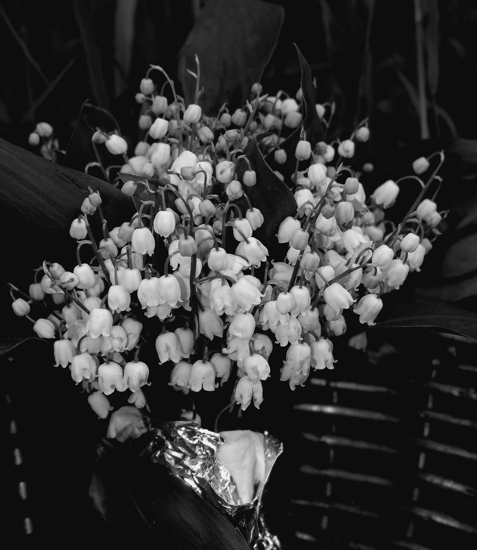le bouquet de  Muguet