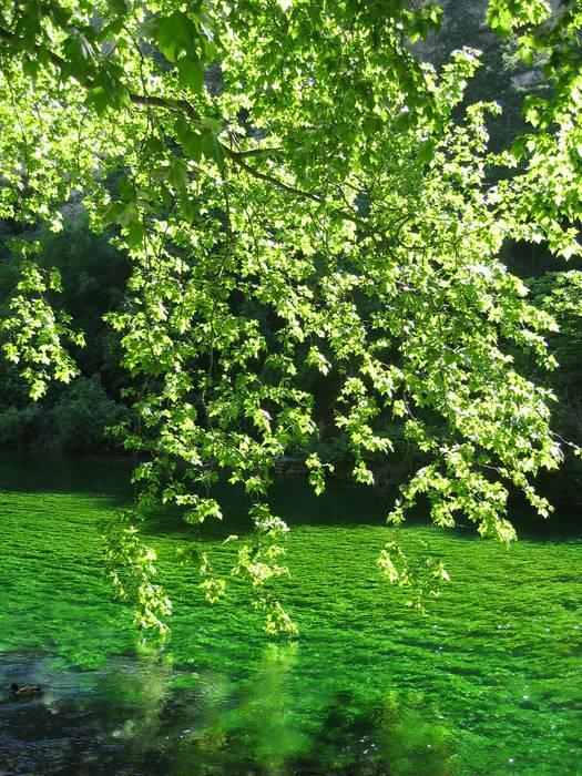 Le calme de la rivière....