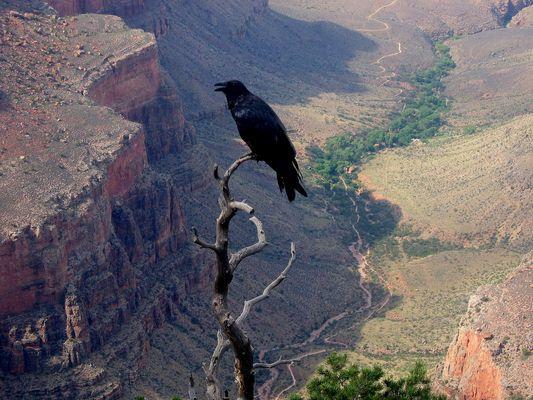 le canyon de la mort