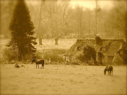 """Le charme de la """"vallée des chaumières""""..."""