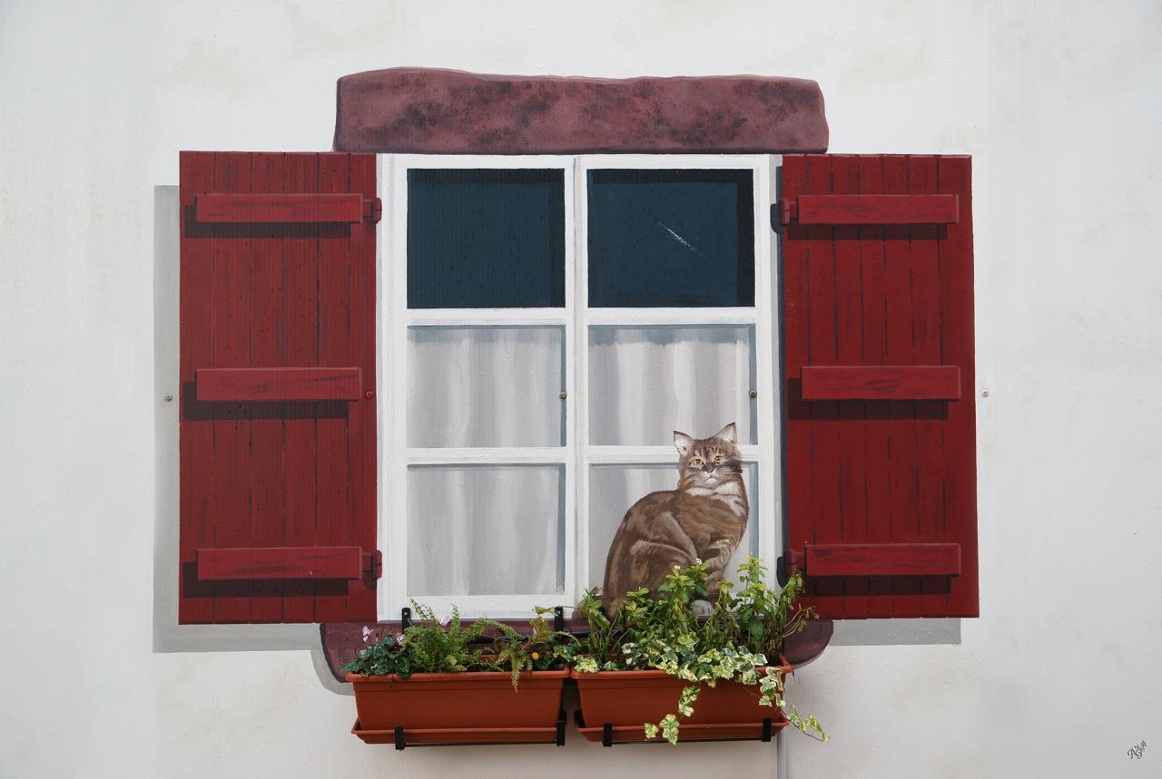 Le chat à la fenêtre..