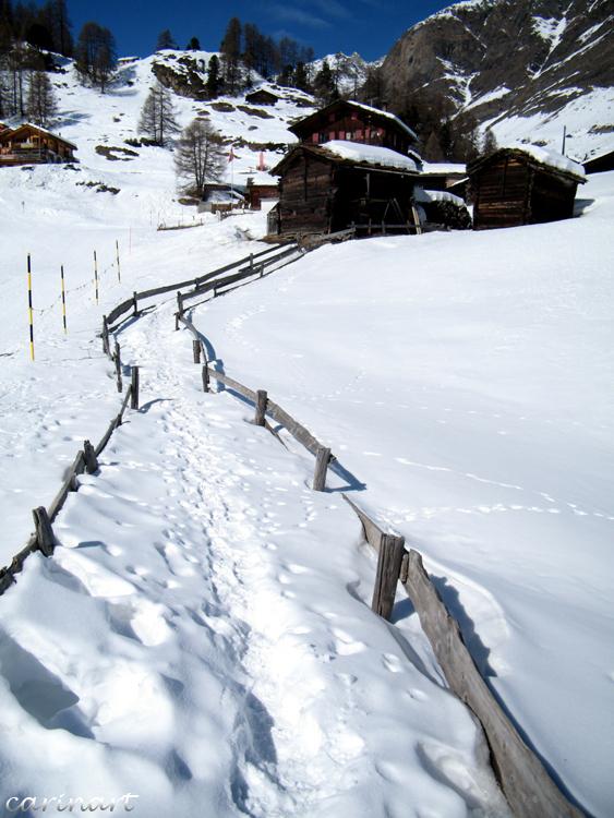 Le chemin / Der Weg