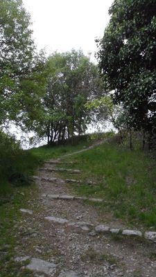 le chemin menant au paradis