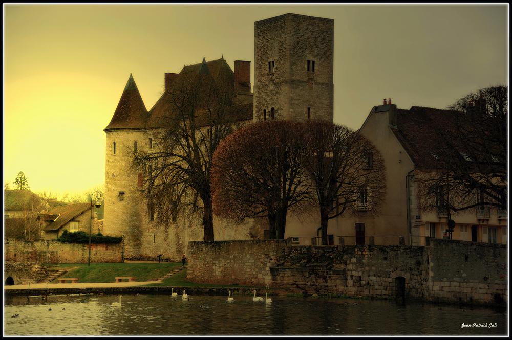 Le château de Nemours