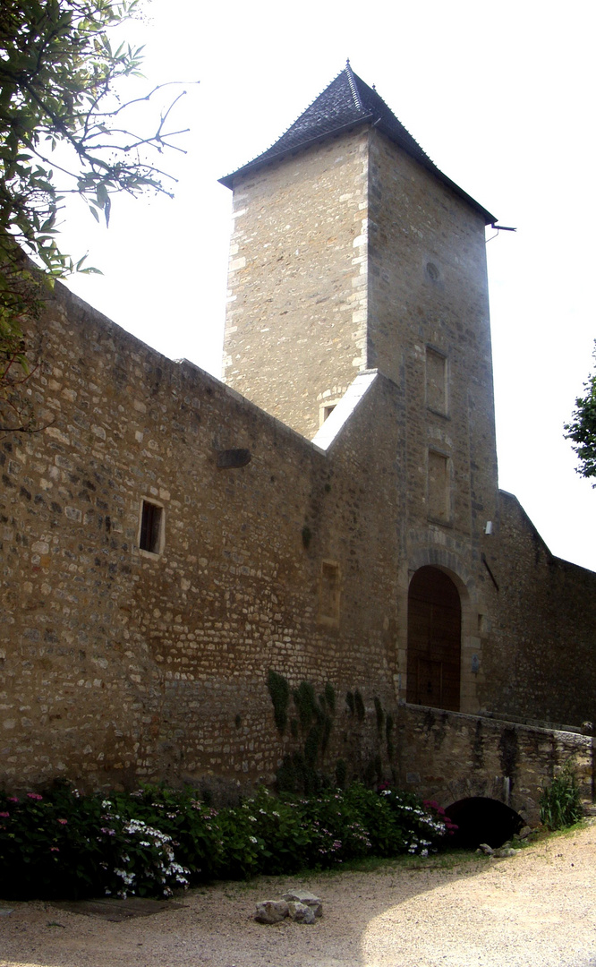 Le Château de Saint Bernard (2)