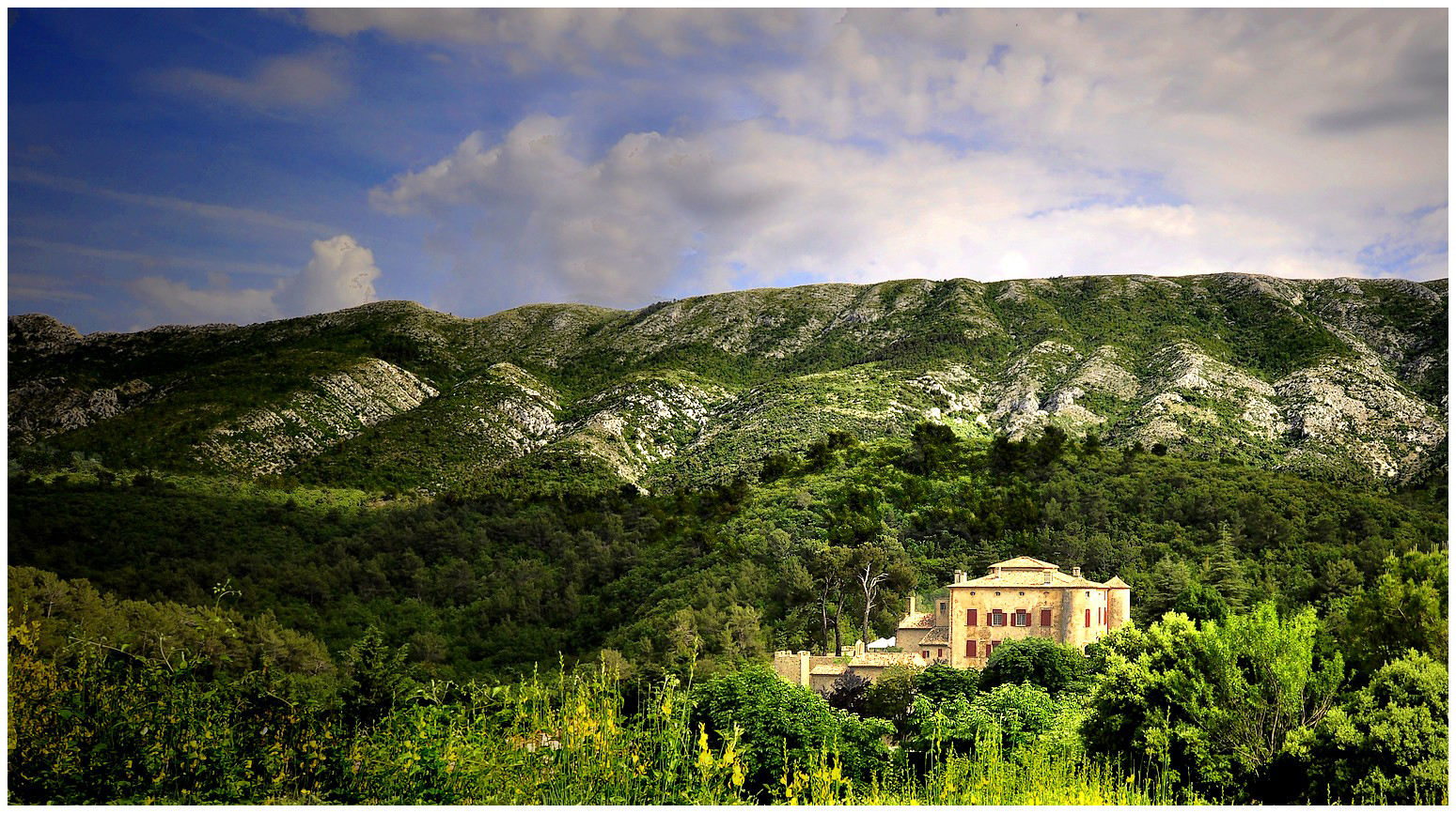 le château de Vauvenargues