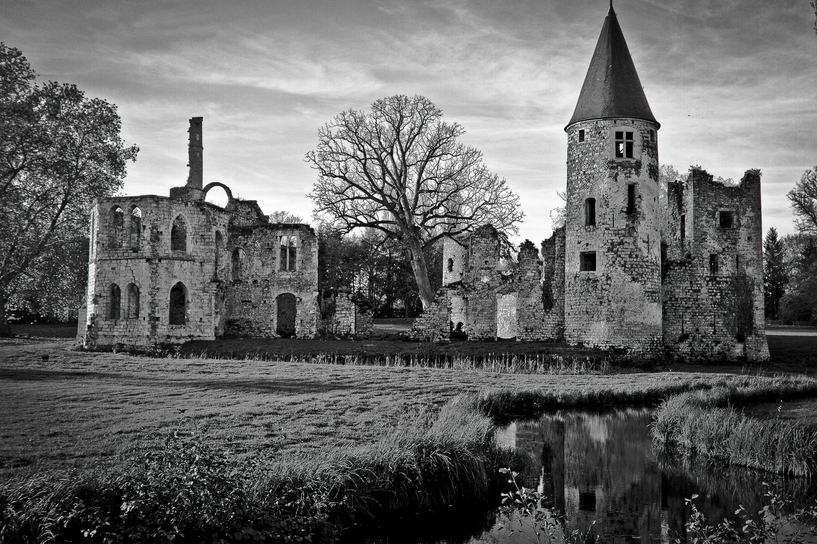le château du vivier (77)
