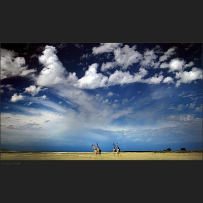 Le ciel africain