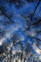 Le ciel vu de la terre ...