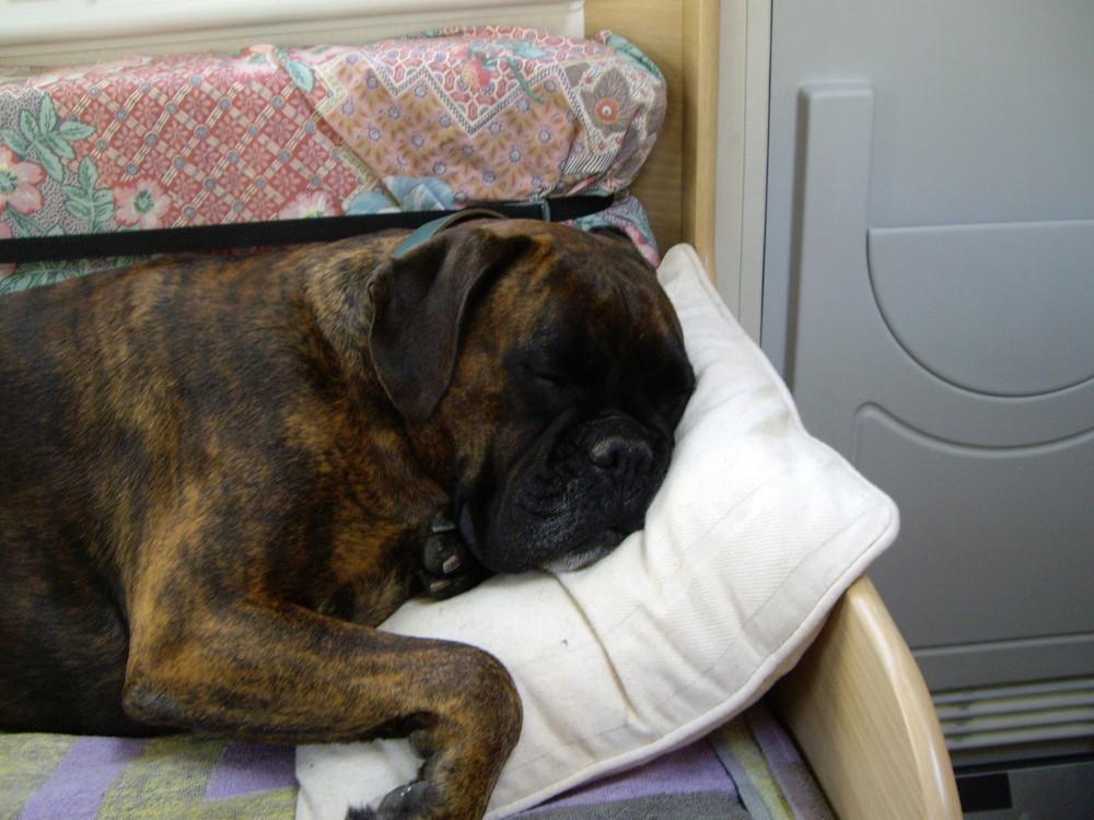 Le confort pour dormir