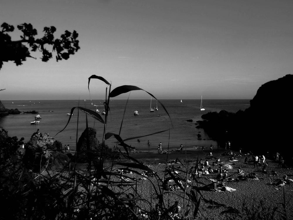 île d'yeu plage des sous