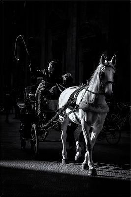 """""""Le fiacre du cheval blanc"""" - n. 2"""