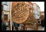 "Le Fracchie di ""San Marco in Lamis"" ... 3 / 10"