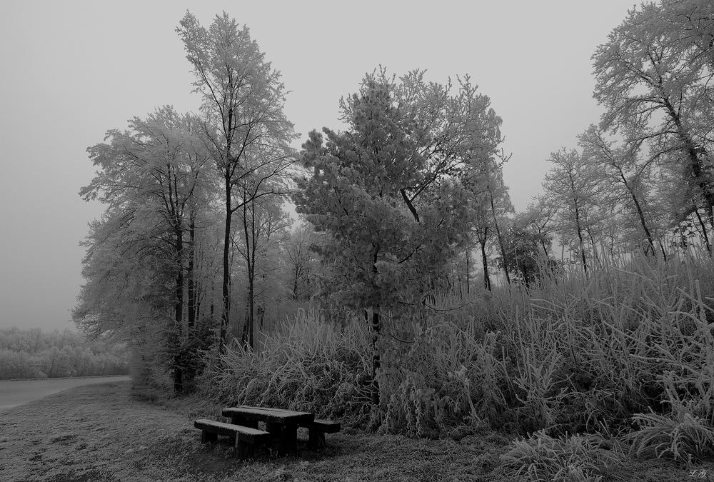 Le froid de la solitude !