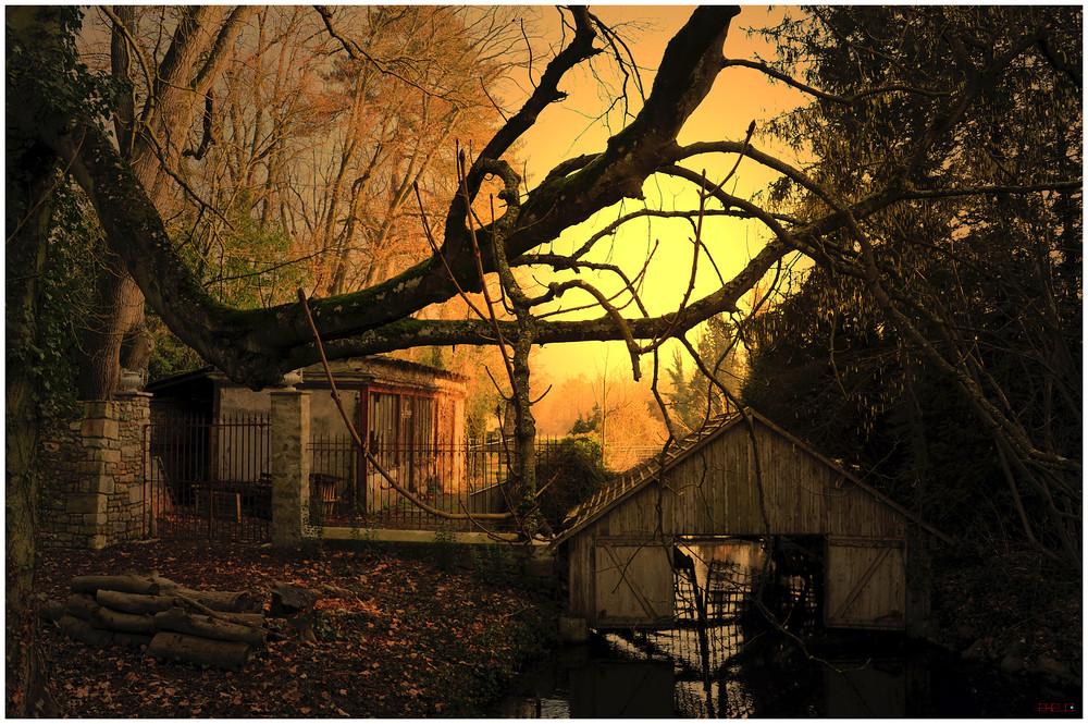 Le garage de l'étang