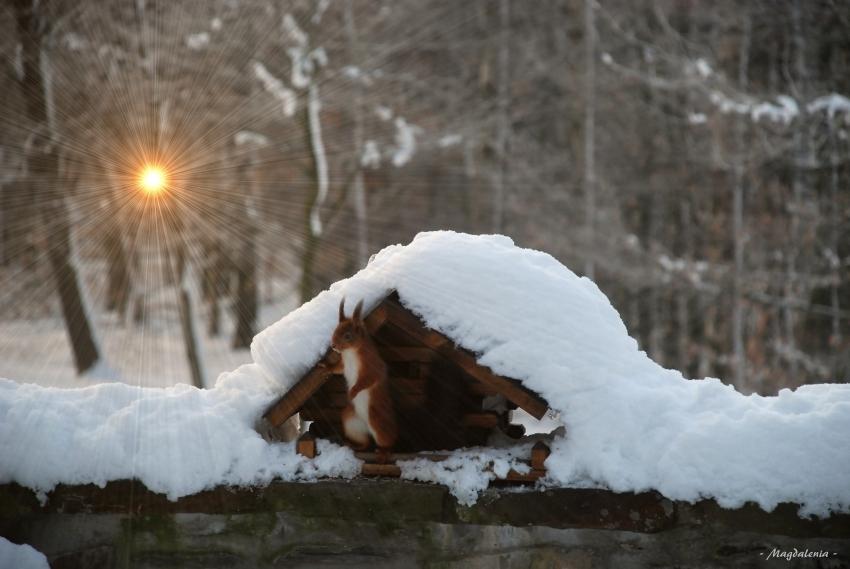 Le gardien du soleil