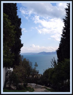 Le golfe de Tunis vu des jardins de Sidi Bou Saïd