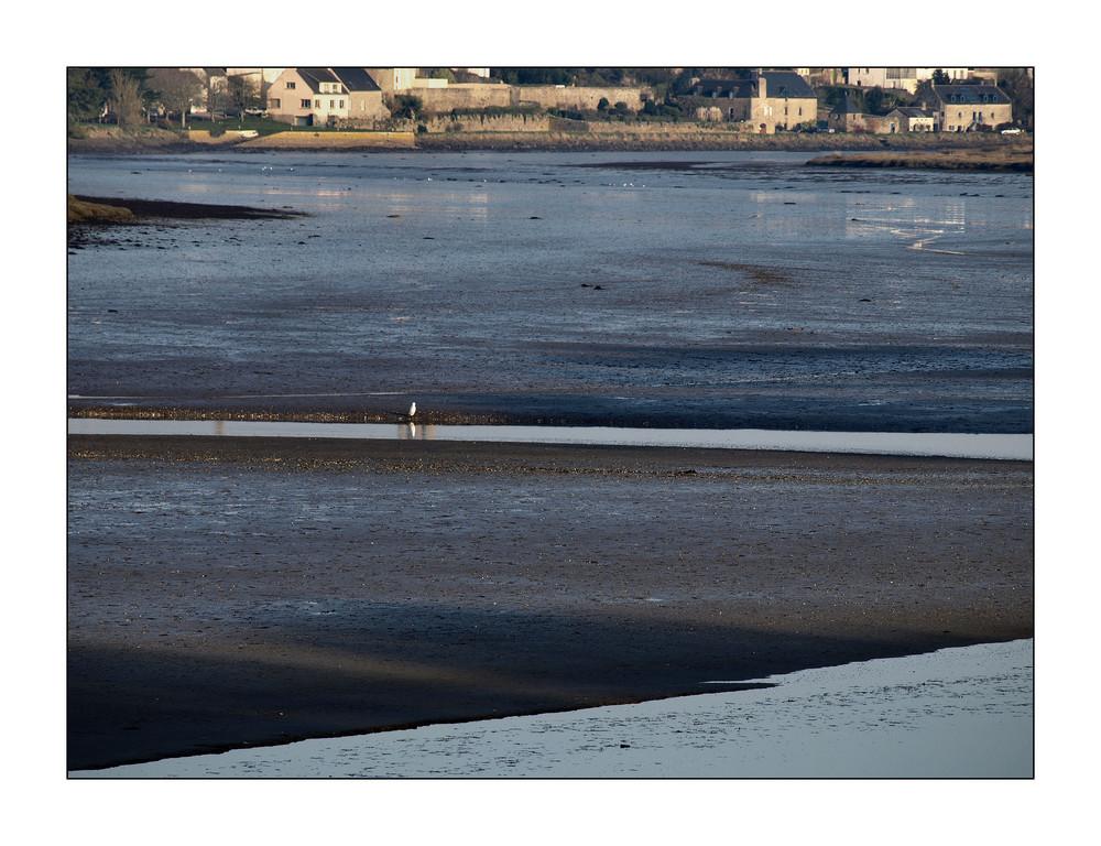 Le Goyen à marée basse / der Goyen bei Ebbe, Dec. 2008