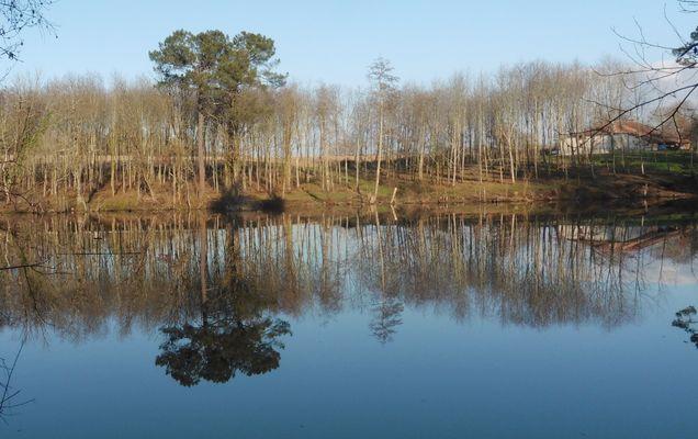 Le grand étang de Garanx à Pouillon