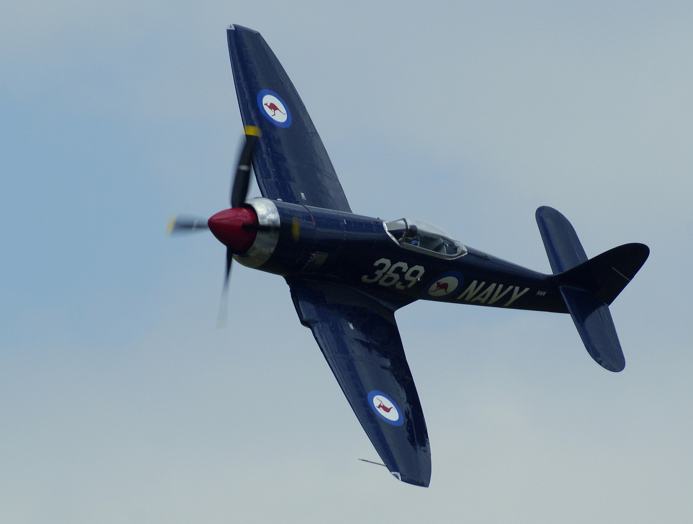 le hawker Sea Fury