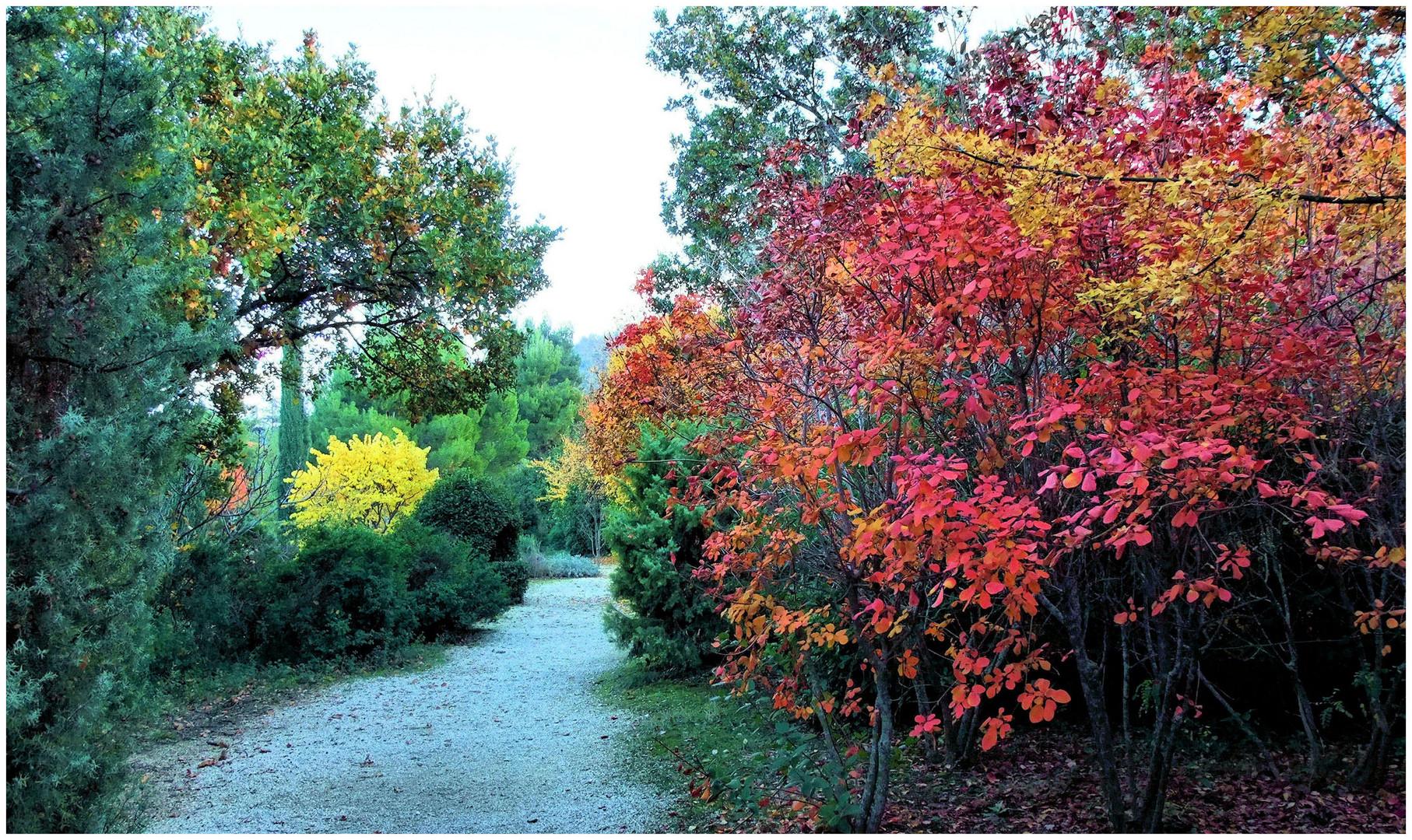 Le jardin aux couleurs