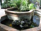Le jardin botanique 13