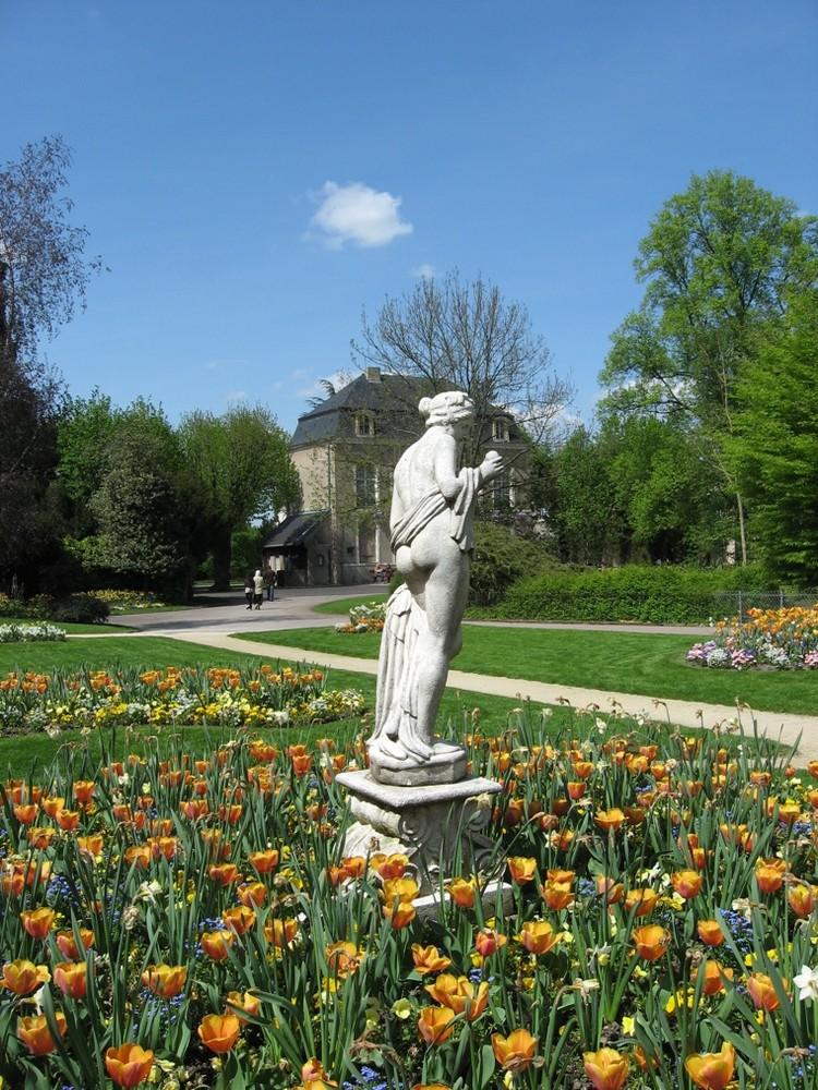 Le jardin botanique 25