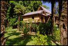 Le Jardin Chinoi