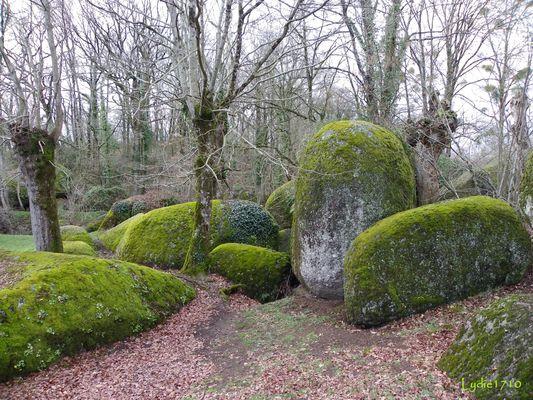 Le jardin des Chirons ...