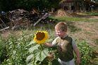 le jardin et l enfant