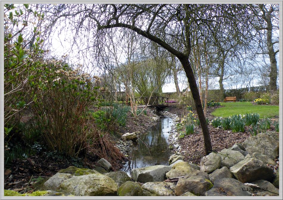Le jardin s'éveille avec le printemps