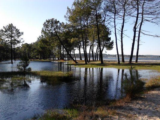 Le lac à Biscarrosse