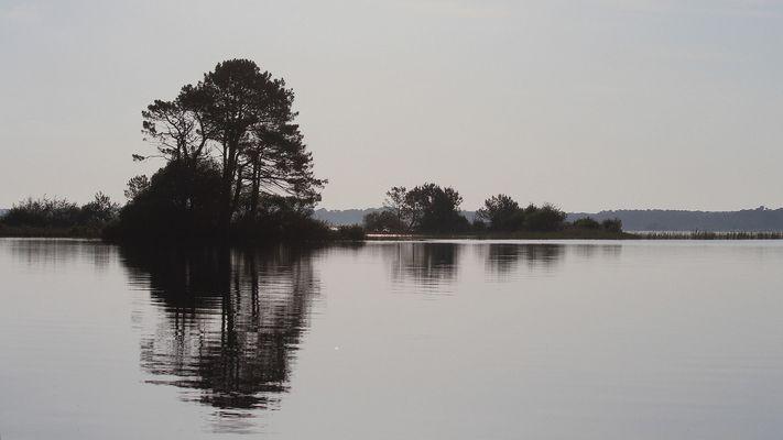 Le lac de Biscarrosse