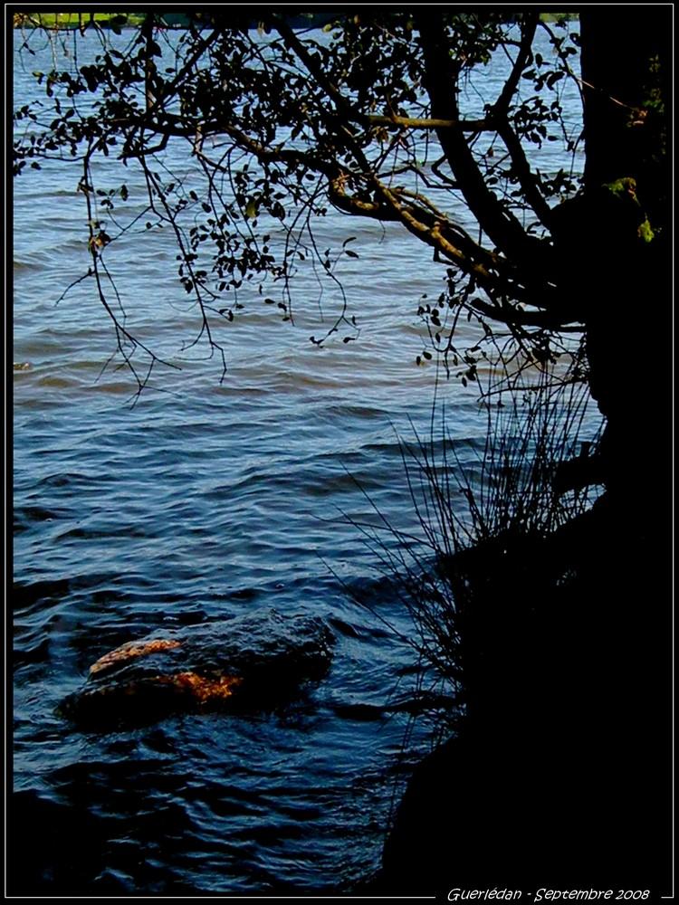 Le Lac de Guerlédan (22)