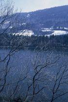 Le lac de Laffrey (1)