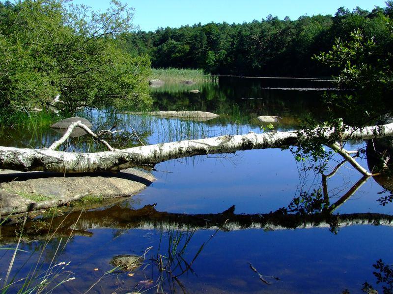 Le lac du Merle
