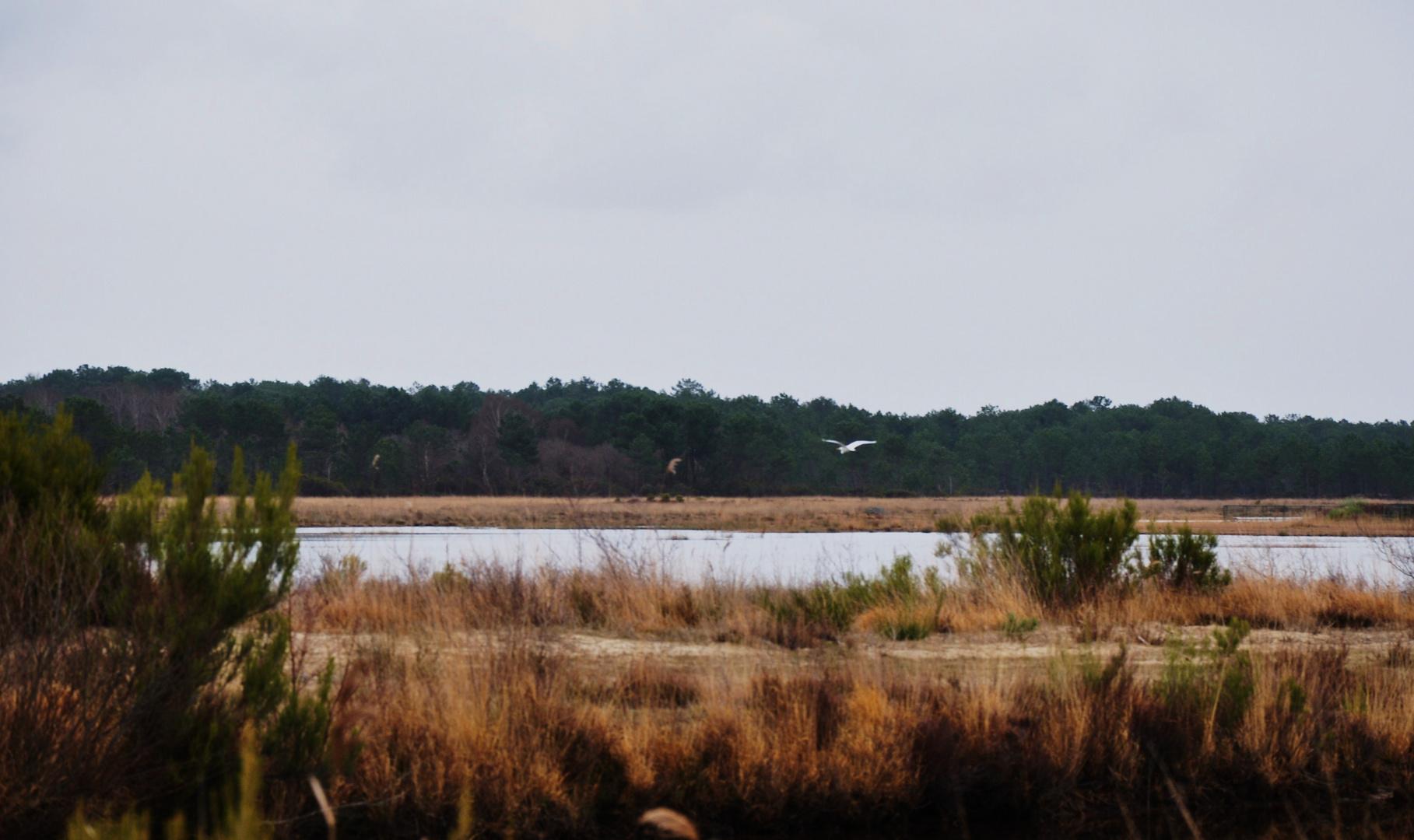 le lac du moutchic