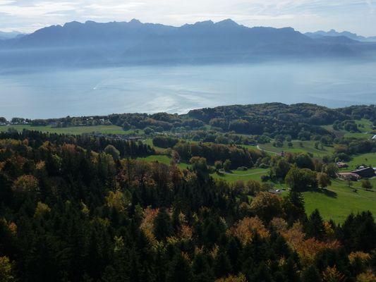 Le Lac Léman depuis le Mont-Pélerin (Suisse - Vaud)
