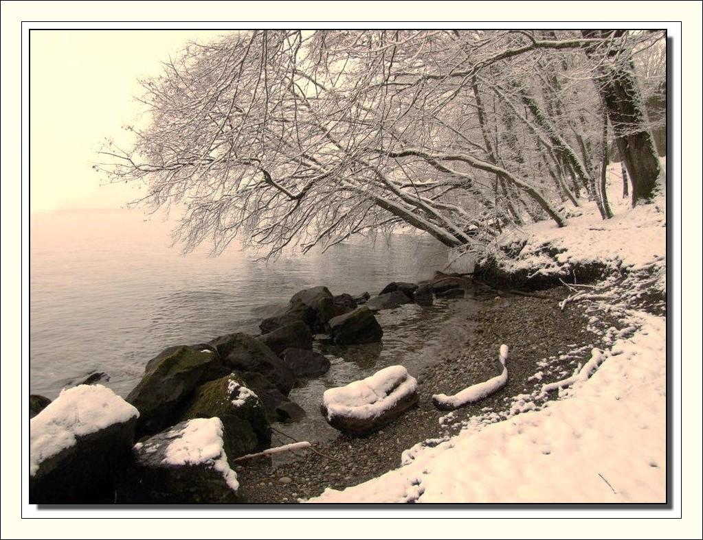 Le léman sous la neige