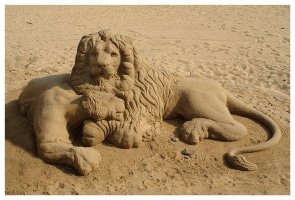 LE LION DE LA LIONNE